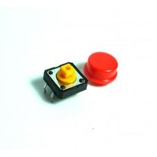 Push Button Besar